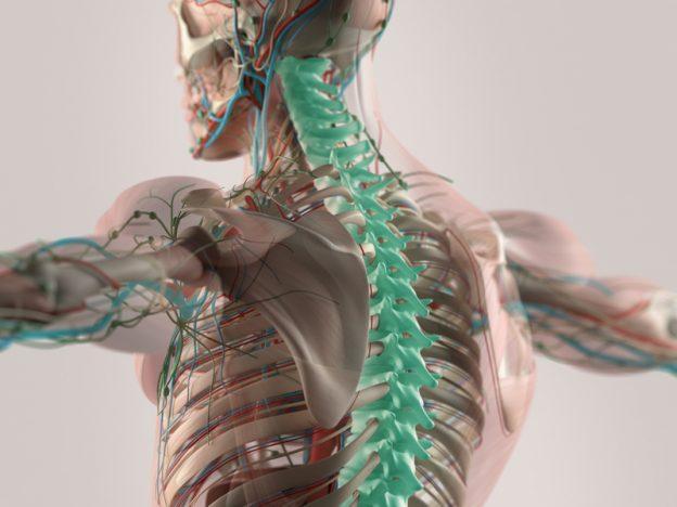 Osteoporose-Risiko erhöht bei Diabetes